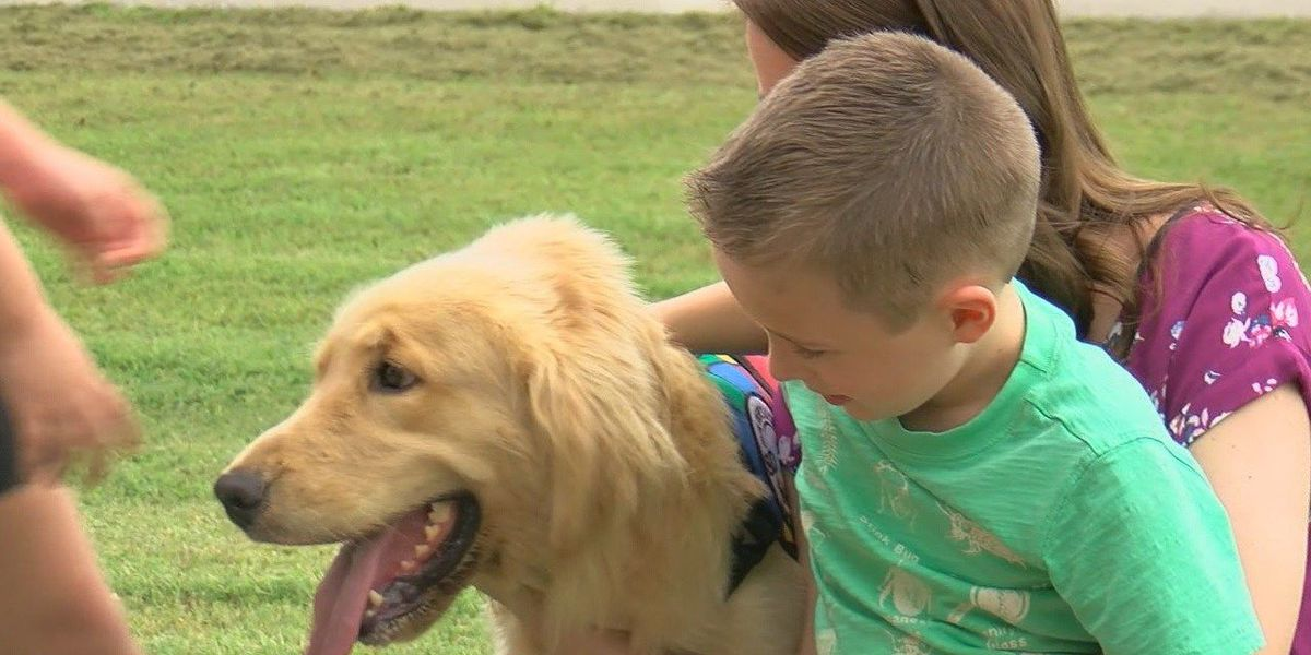 Autistic boy receives new best friend thanks to donations