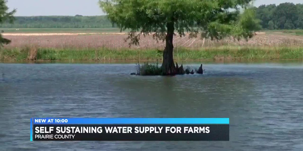 Farmers create system to store water ahead of summer months