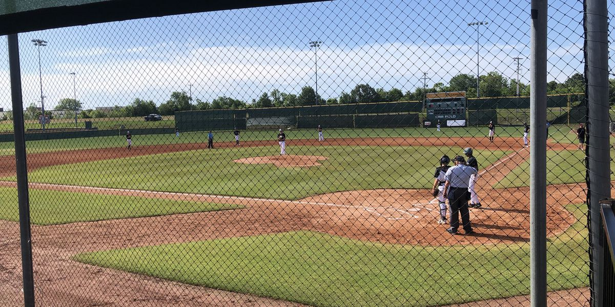 Youth baseball first live sporting event to return to Mid-South since coronavirus shut down sports