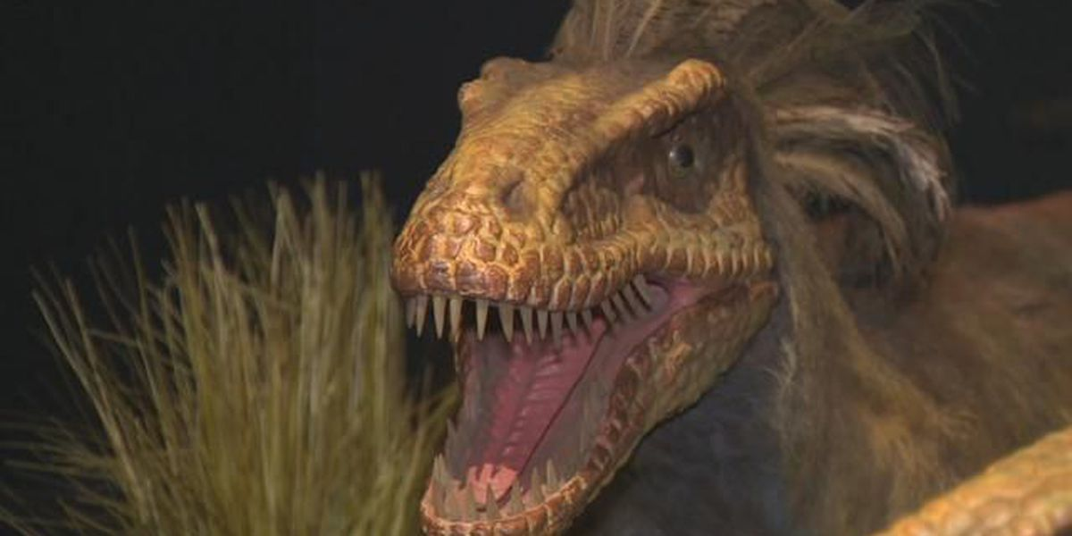 Dinosaurs to take over Memphis Zoo in new spring exhibit