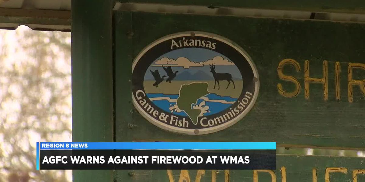 AF&GC warns against firewood