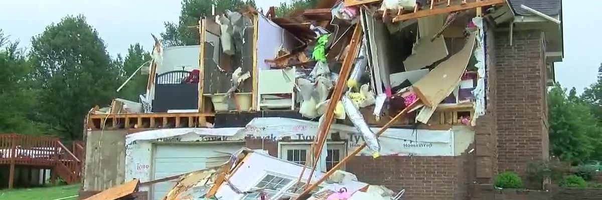 Goobertown community faces storm damage to clean up
