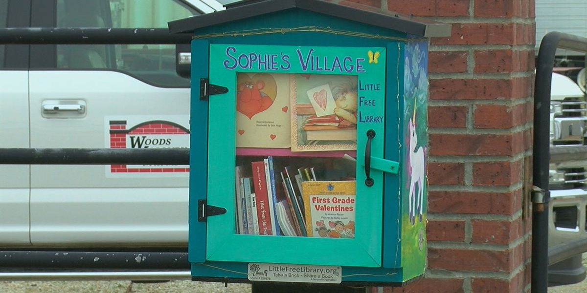 Sophie's library hopes to see new visitors
