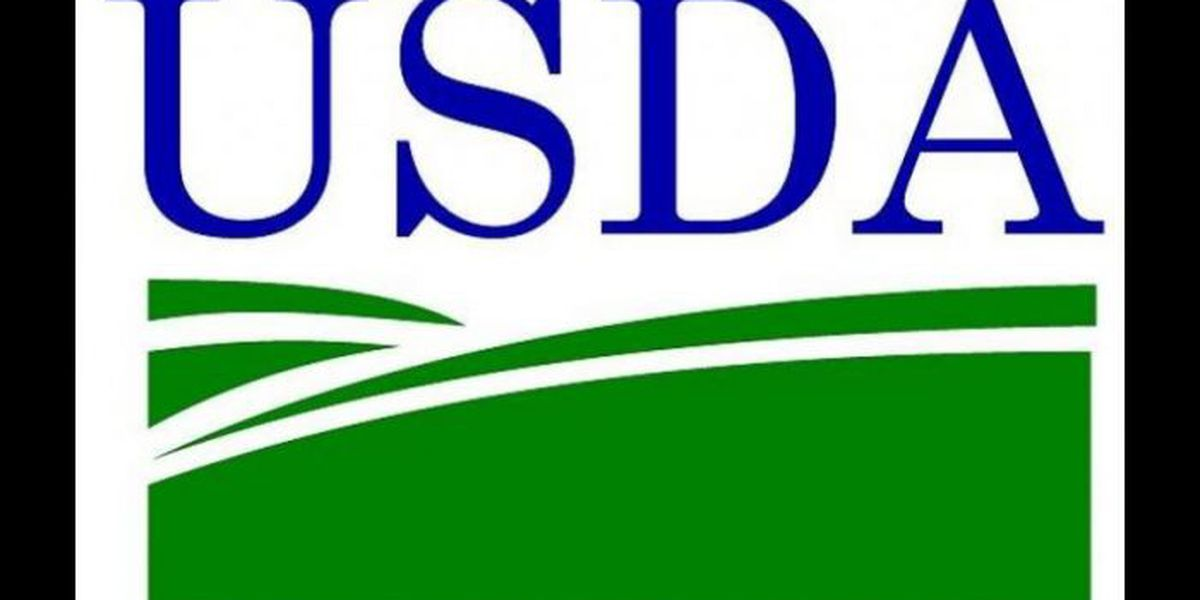 4 Arkansas cities express interest for USDA offices