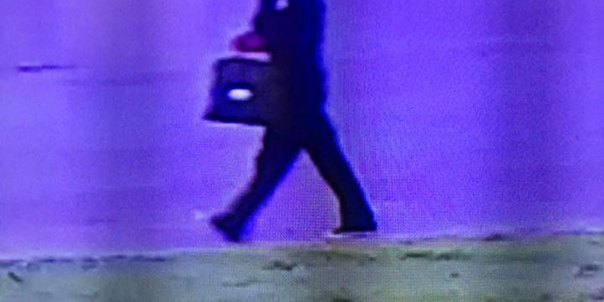 Authorities investigate thefts, look for suspects