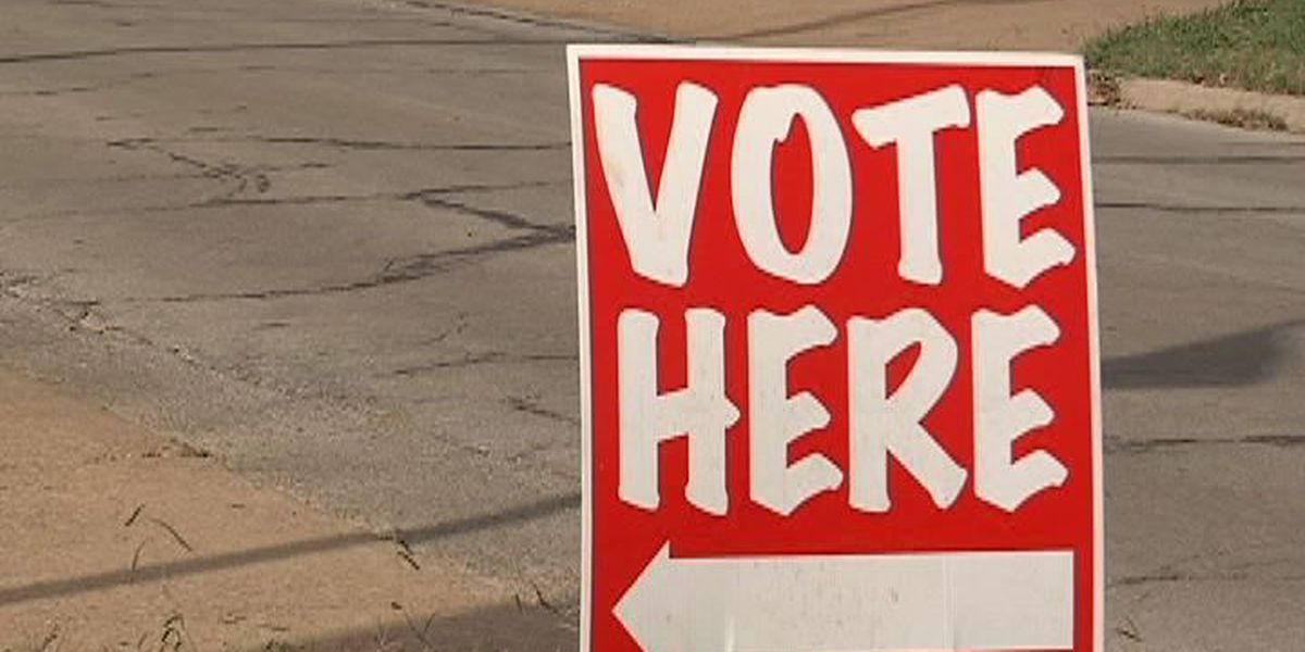 Five issue items on Nov. ballot explained