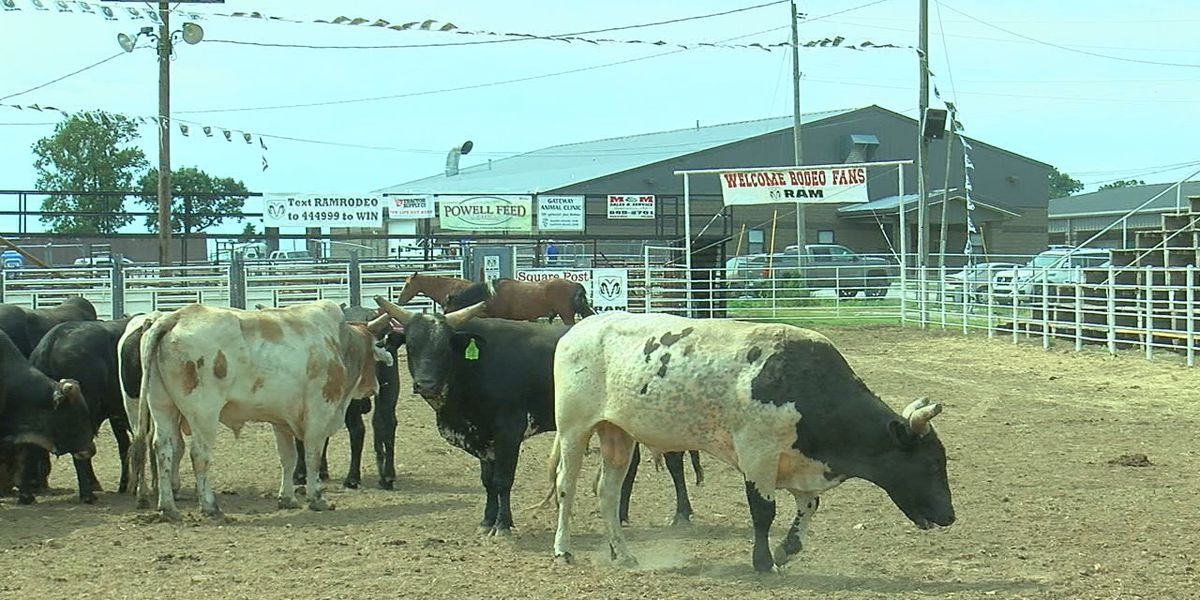 40th annual Lawrence County PRCA Rodeo this weekend