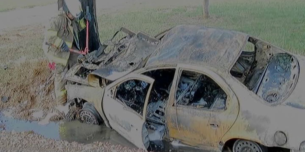 Car hits tree and catches fire, sheriff's office investigating