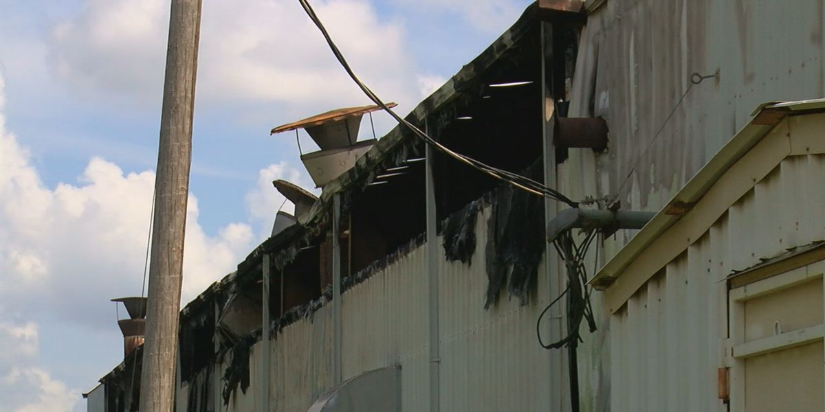 Business damaged by fire, 120 employees displaced