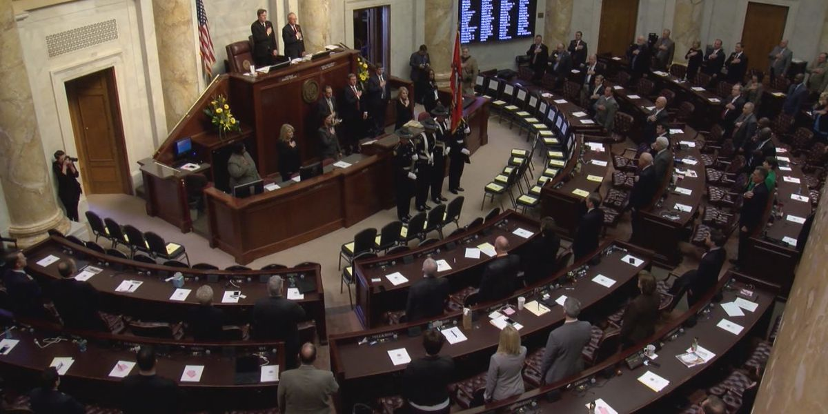 Paragould lawmaker wants people who encourage suicide to face felony charges