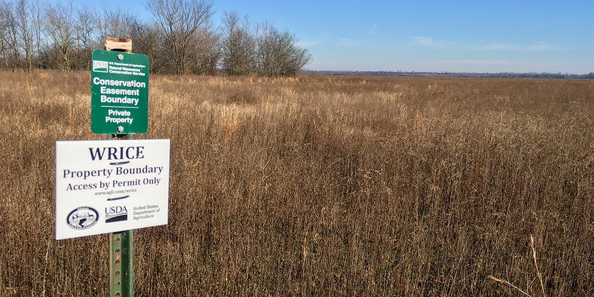 New opportunity for hunting, wildlife-watching in Lawrence County