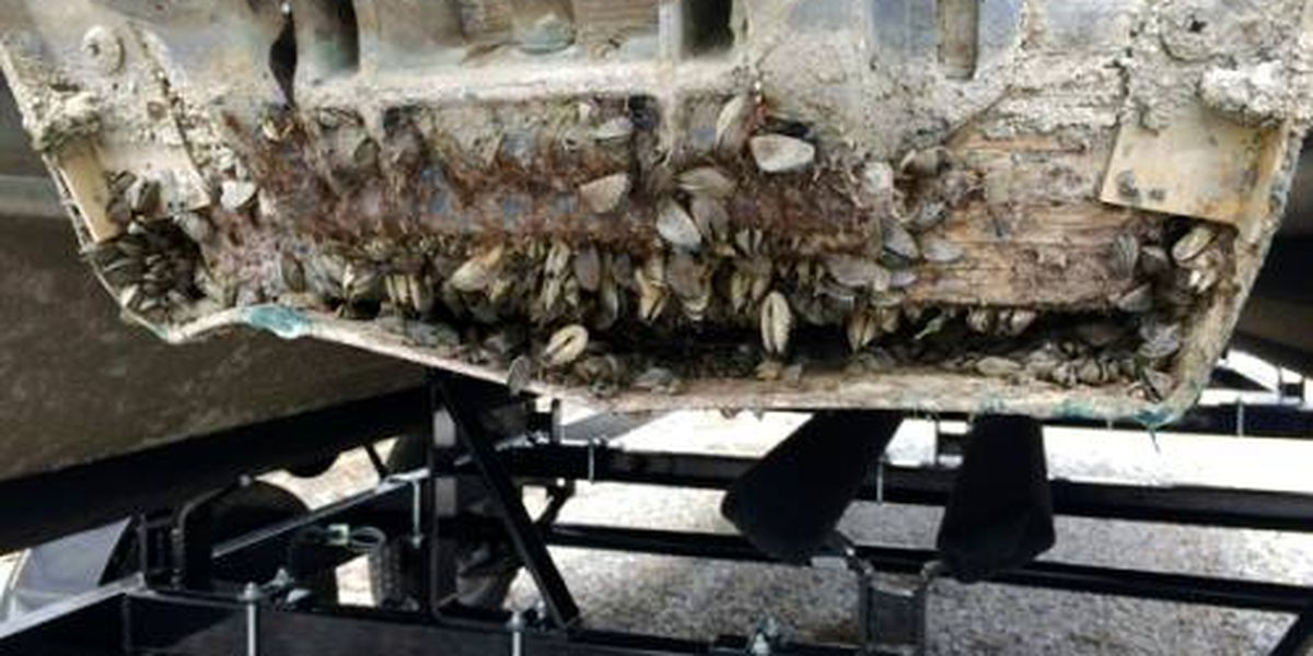 AGFC intercepts boat covered in invasive mussels