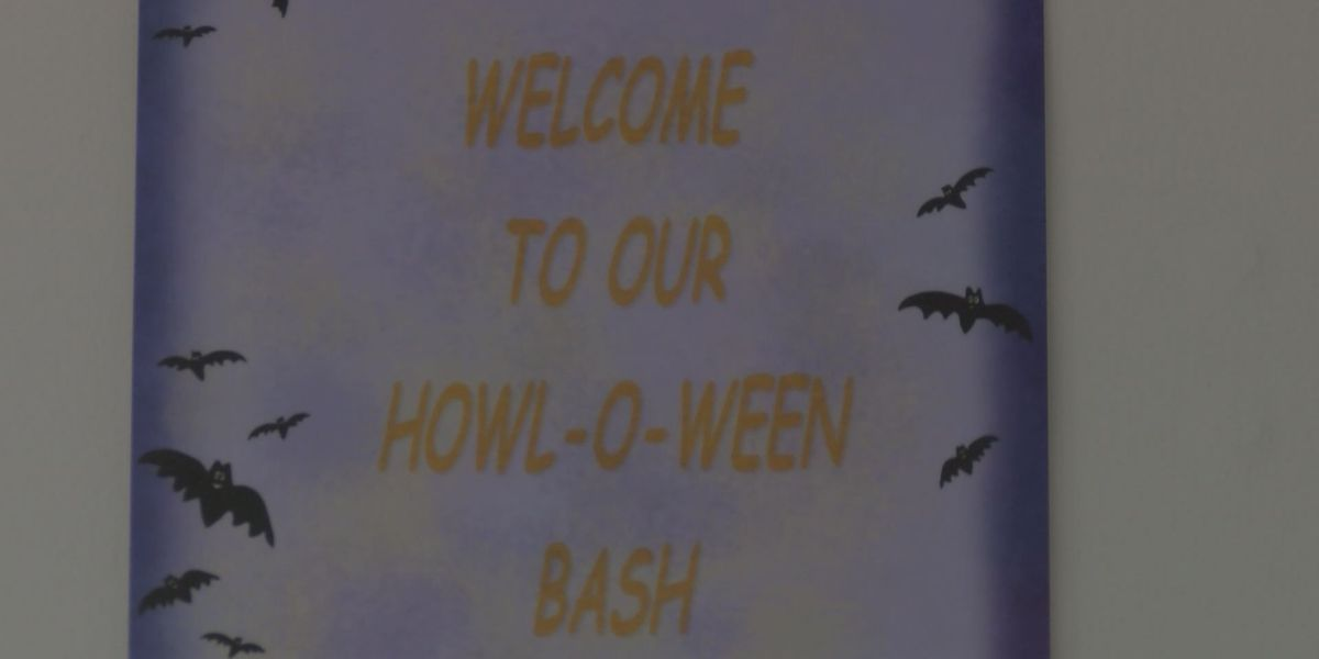 ALFA hosts Howl-o-ween to reduce veterinarian debt