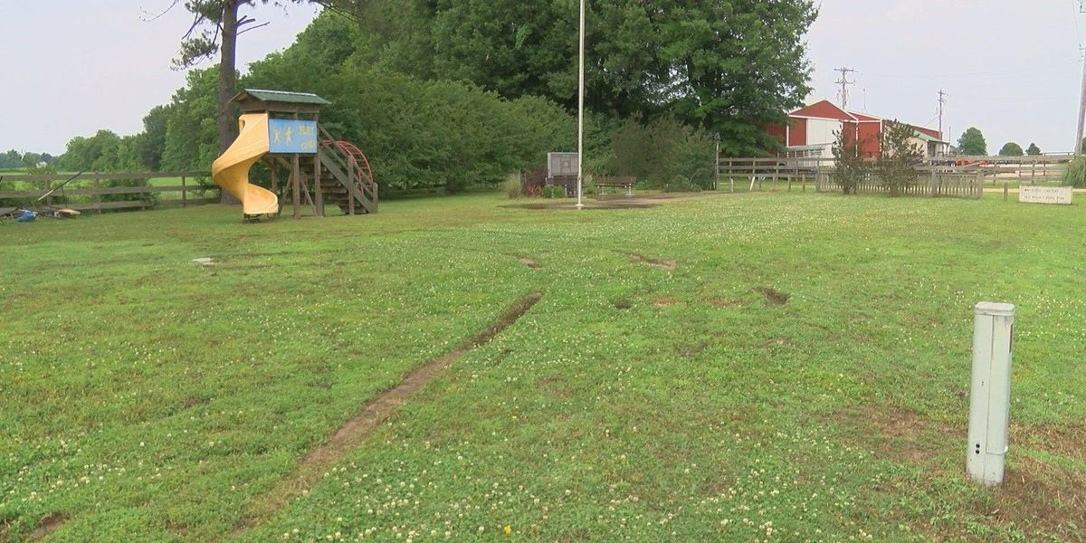 Neighbor says kids responsible for park damage