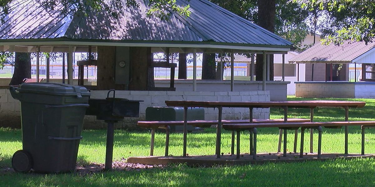 Labor Day festivities canceled in Rector, parks left empty