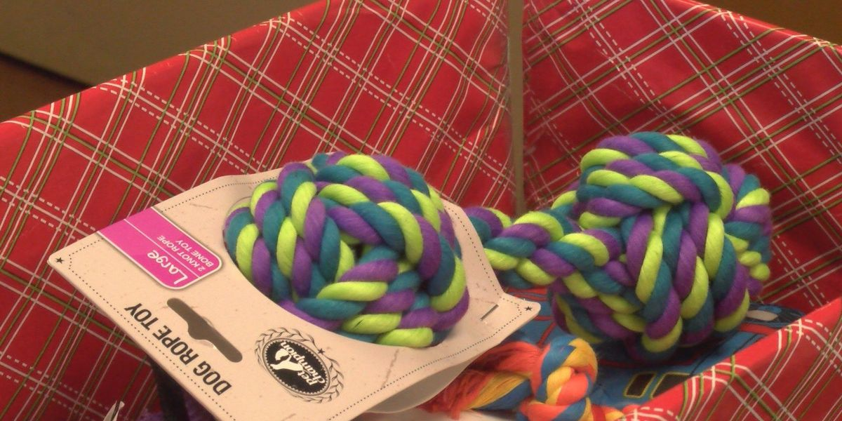 Region 8 scouts ditch Christmas gifts to give back to community