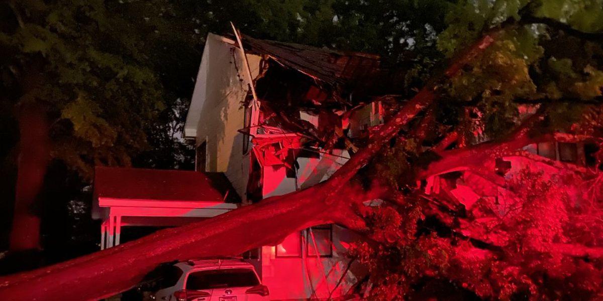 Tree falls on home as strong storms move through Jonesboro