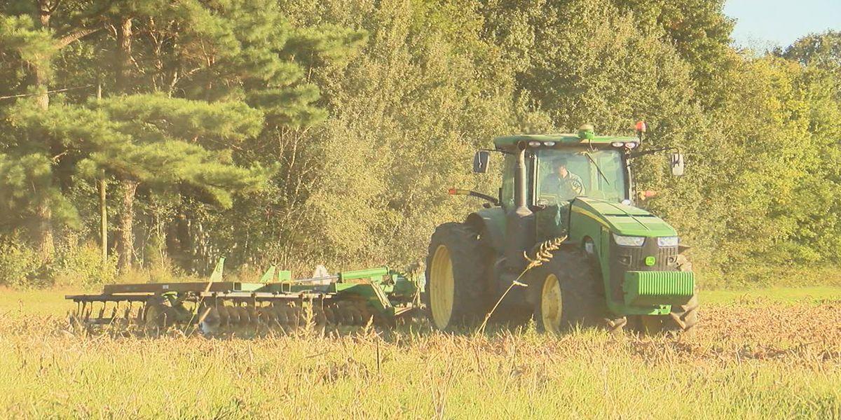 Region 8 farmers prepare for potential impact of Hurricane Delta