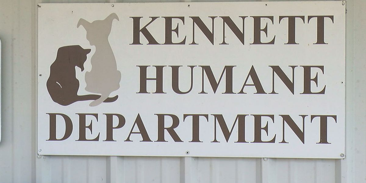 Kennett Humane Dept. needs donations to care for dogs in hoarding case