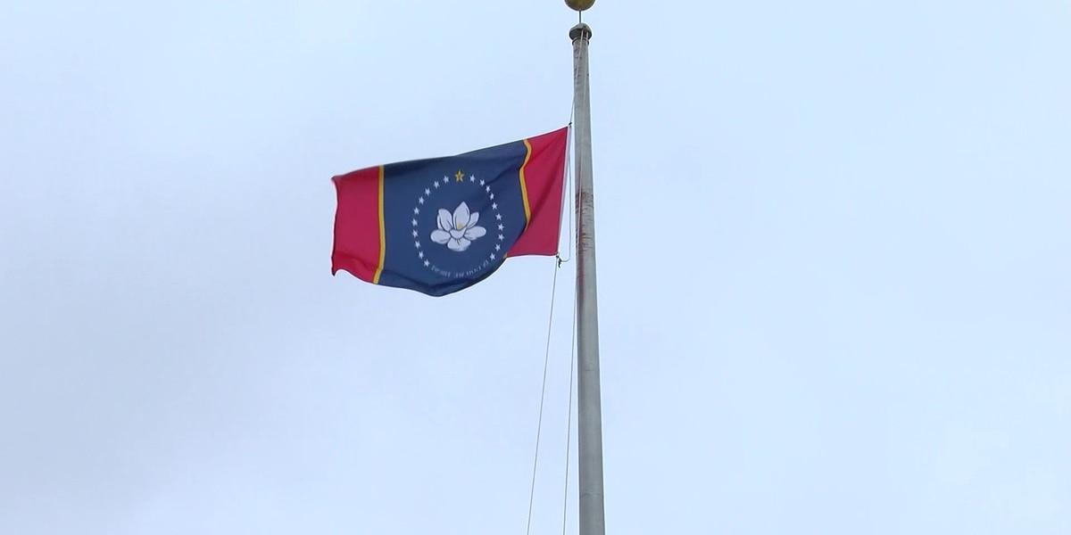 Mississippi Flag Commission chooses Magnolia flag to appear on the November ballot