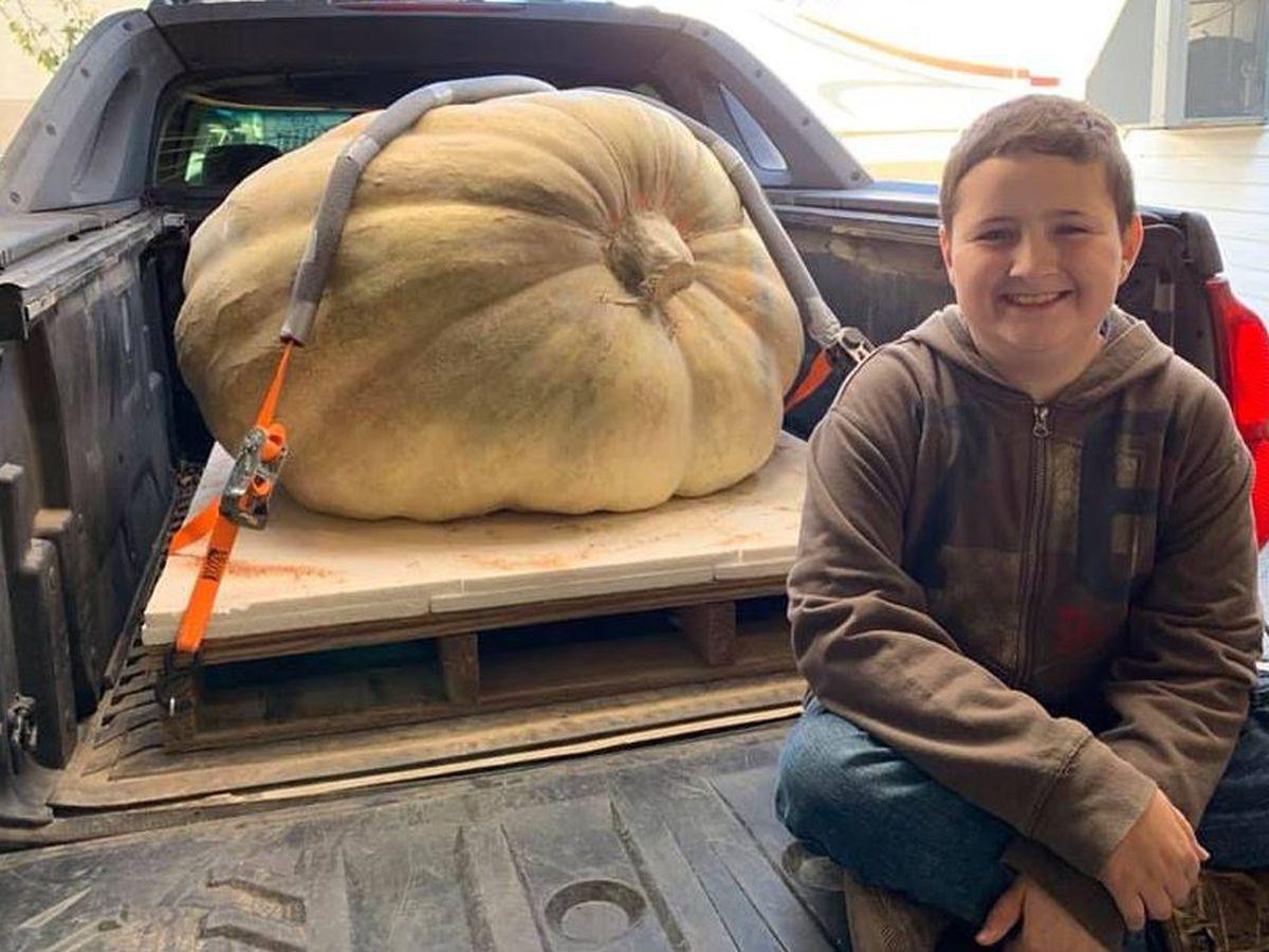 Greene County boy's giant pumpkin takes state honors