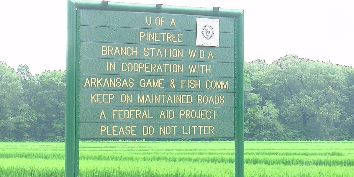FBI scrutinizing Northeast Arkansas land deal
