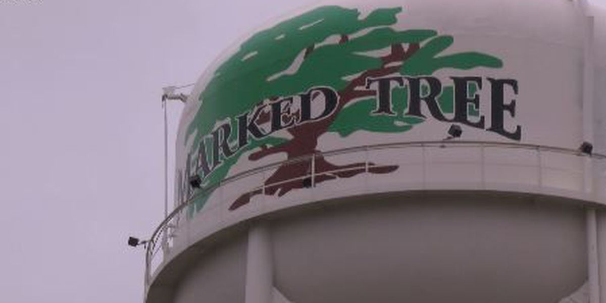 Marked Tree residents may see new jobs from rice facility