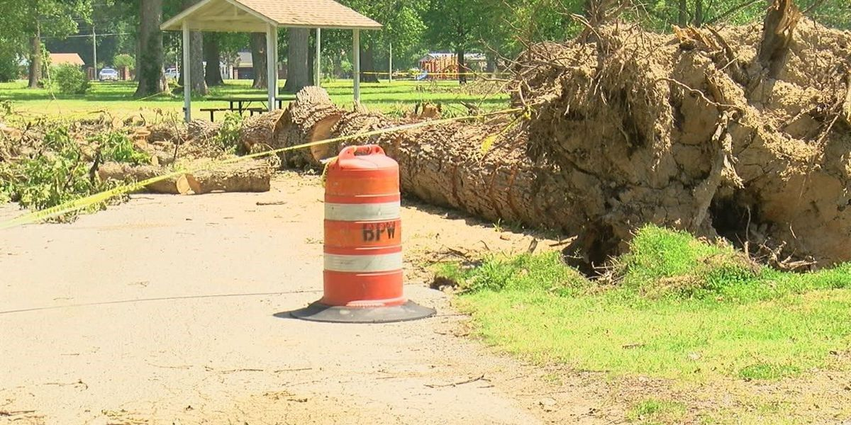 Cleanup in Blytheville continues following storms