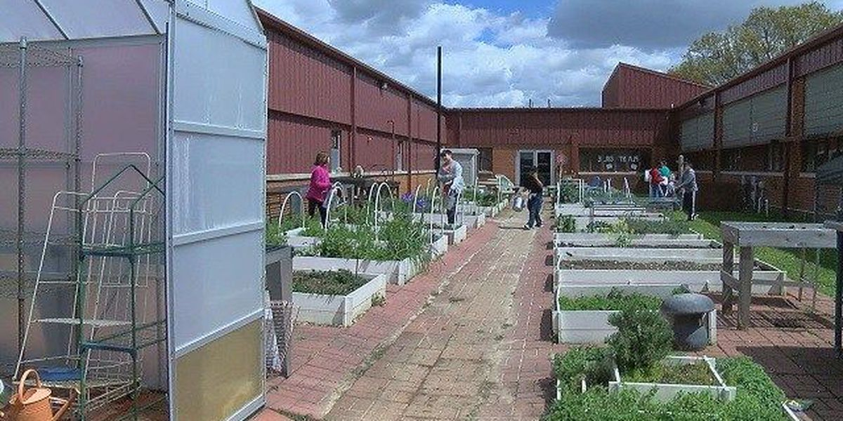 Health and Wellness students prep for annual Plant Sale