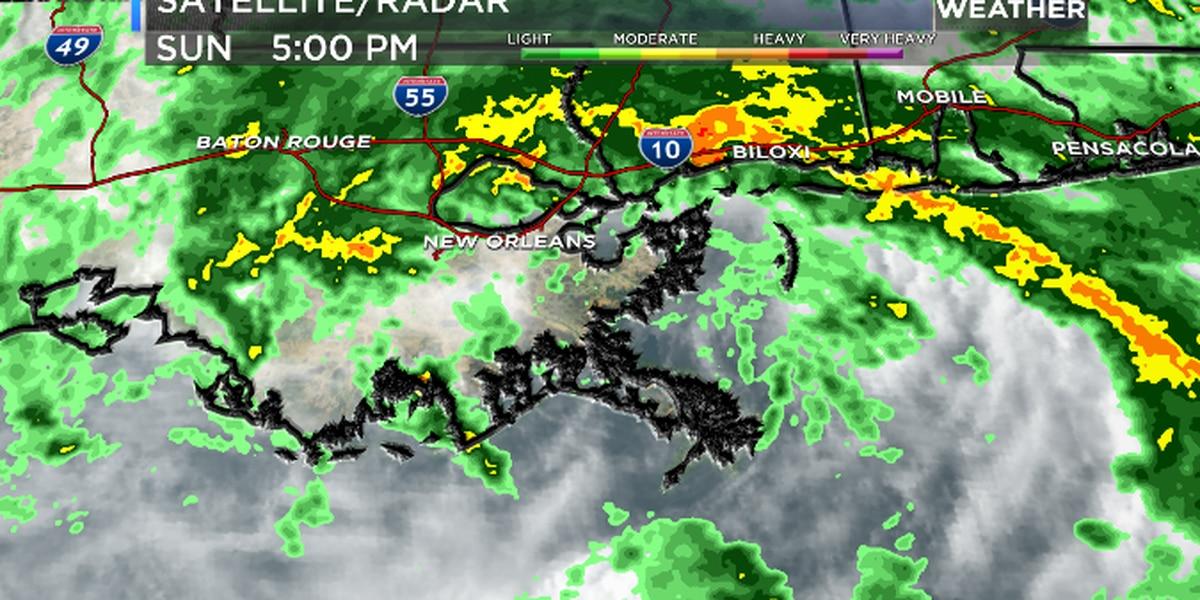 Tropical Storm Cristobal officially makes landfall in Louisiana.