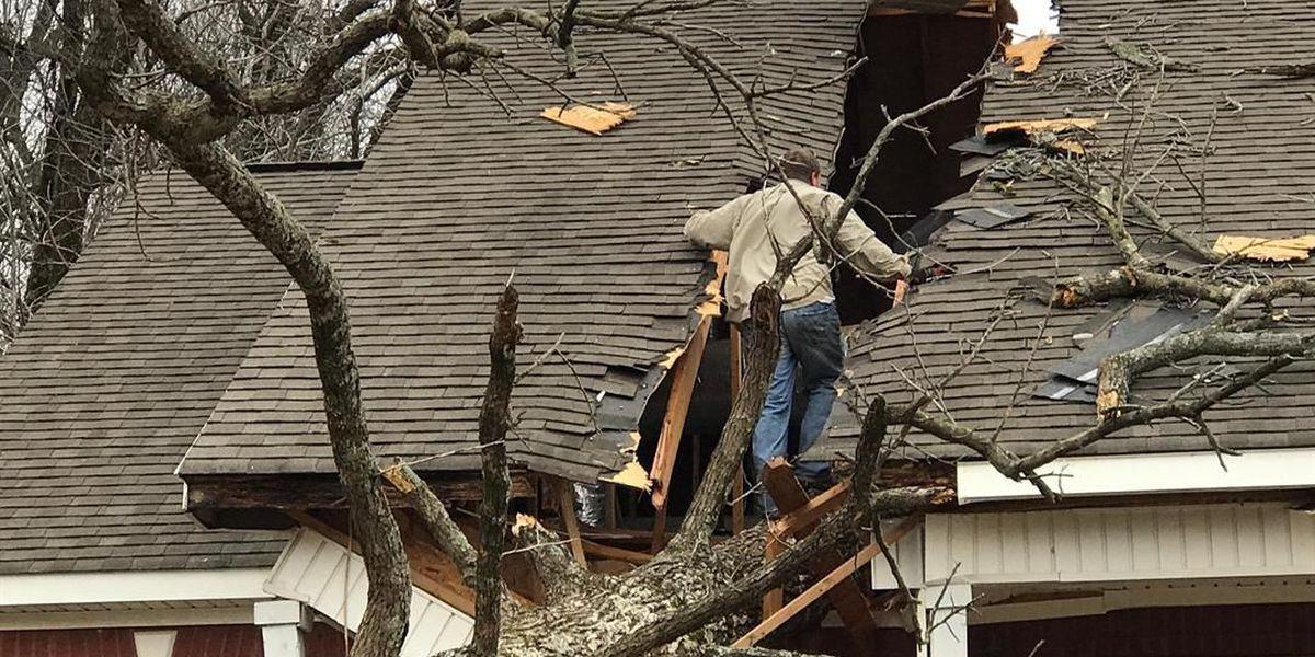 Winds cause havoc, damage in Region 8
