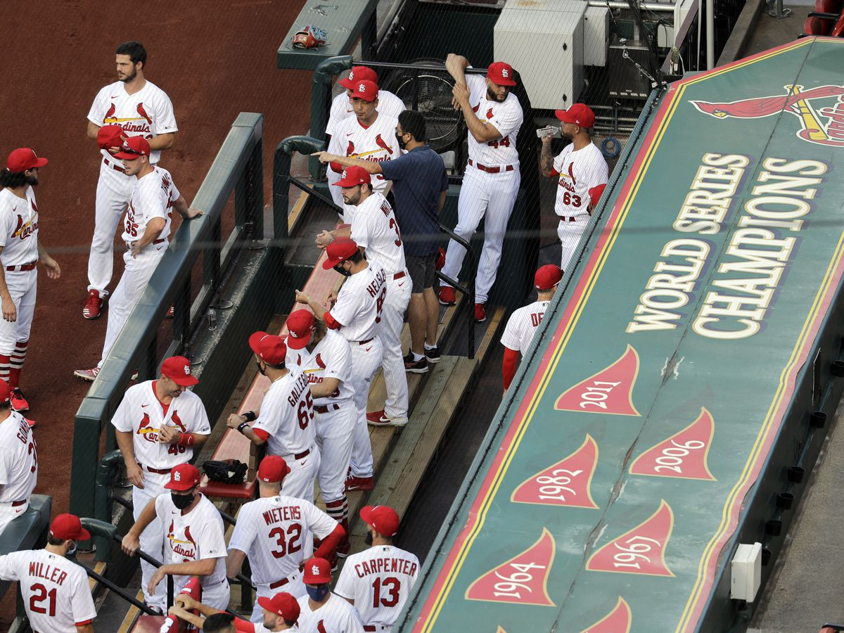 Cardinals to play against Chicago White Sox on Saturday