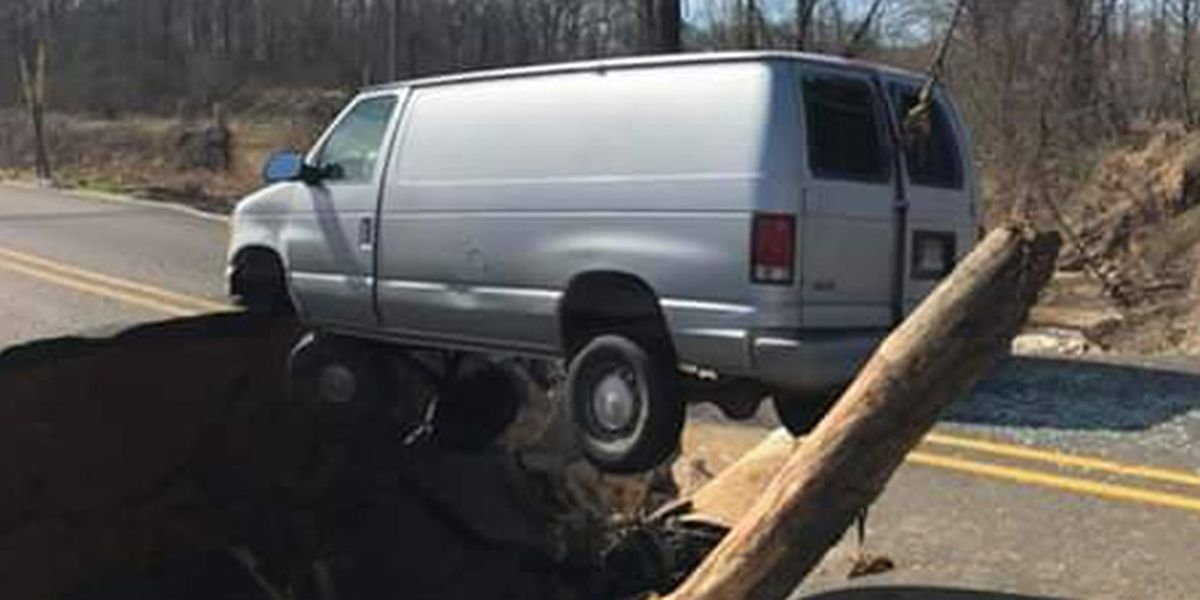 Road collapses in Forrest City