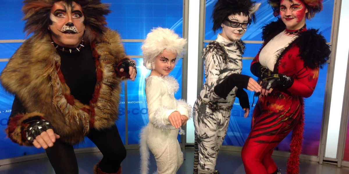 """""""CATS"""" are prowling their way around the Collins Theatre"""