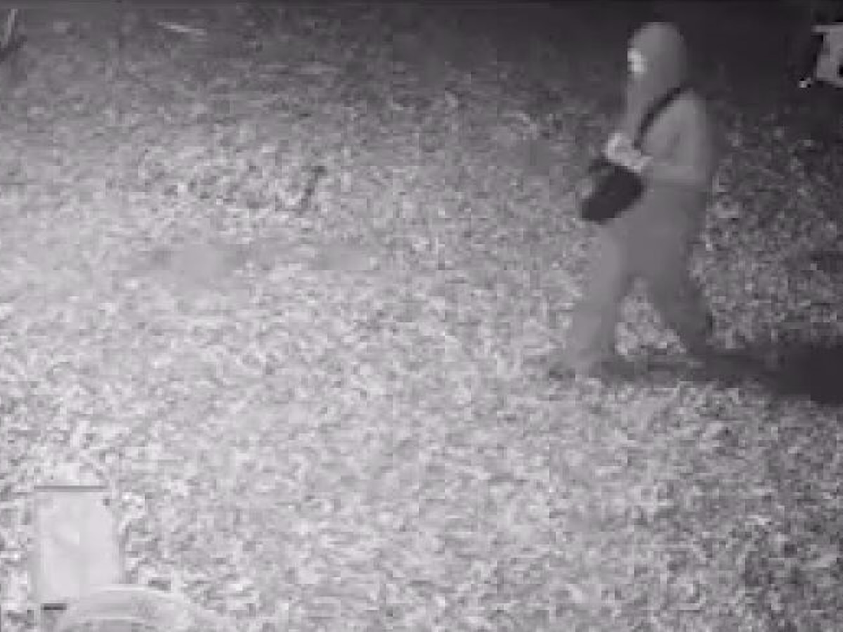 Jonesboro police search for burglary suspect caught on camera