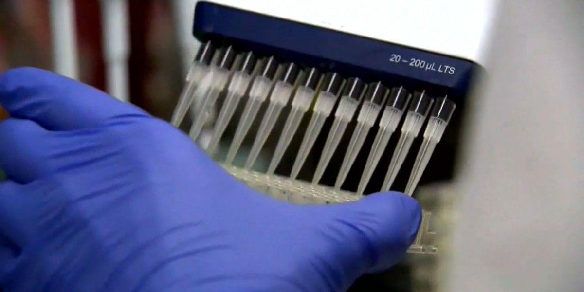 Plasma donation program could help treat COVID-19 patients