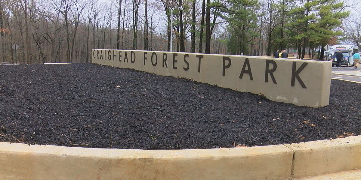 Bats at Craighead Forest Park test positive for rabies