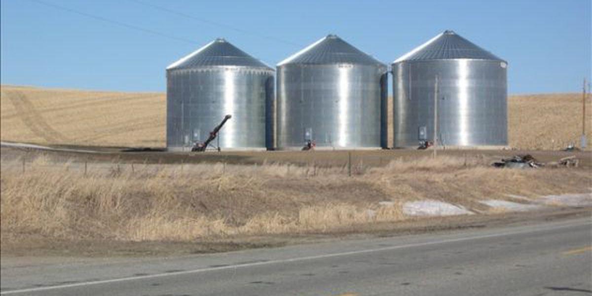Man dies after getting trapped in grain bin