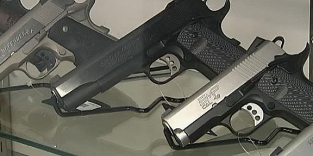 Police dept. schedules last conceal carry class for the year