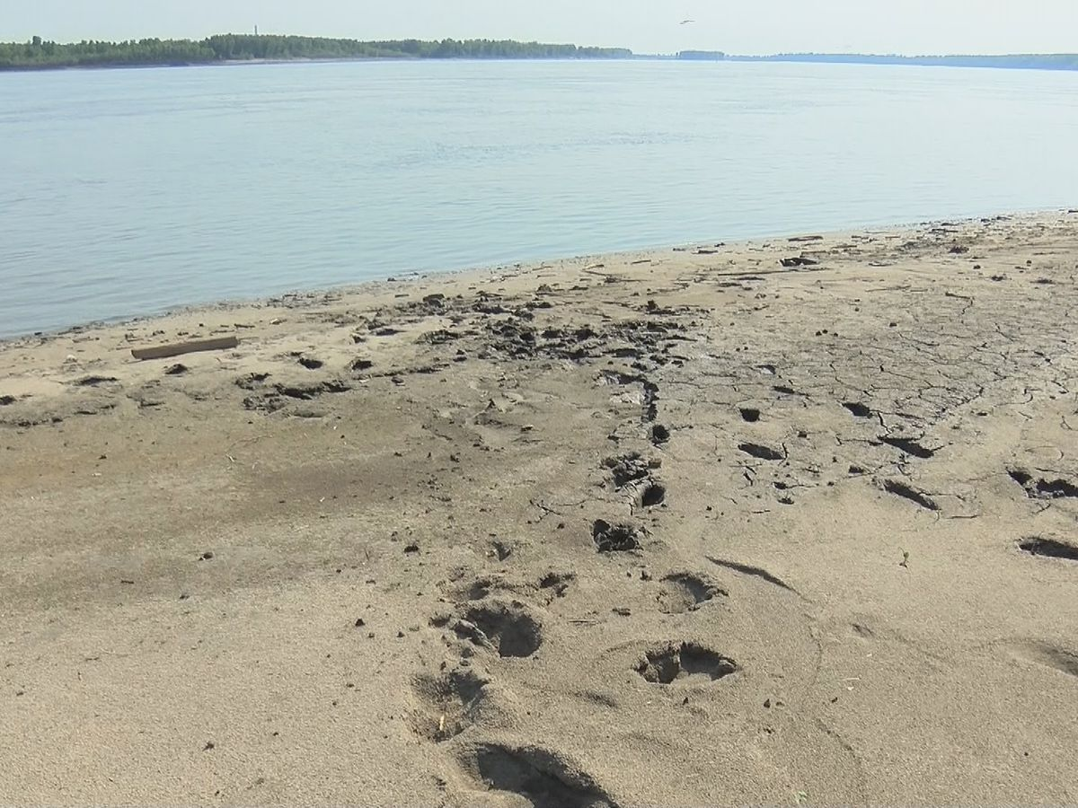 Park along New Madrid riverfront closes after mud traps woman overnight