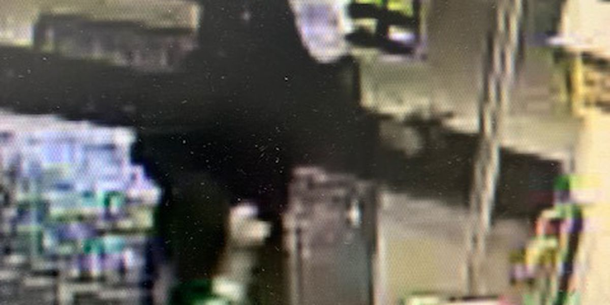 Jonesboro police investigating armed robbery at Dollar General