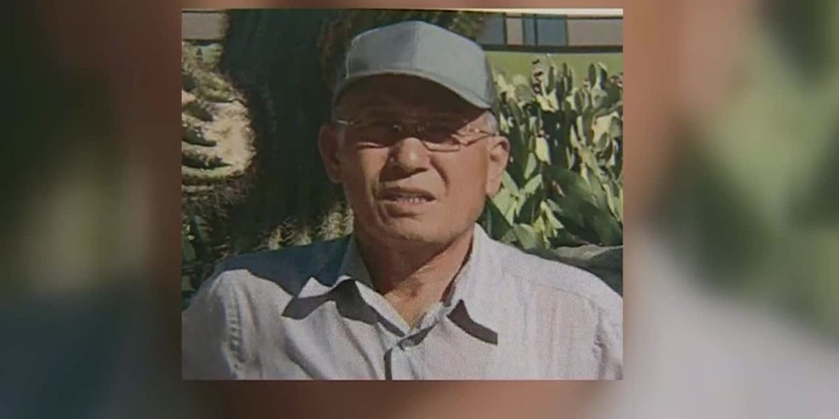 73-year-old hiker survives in Calif. wilderness for week by drinking from creek