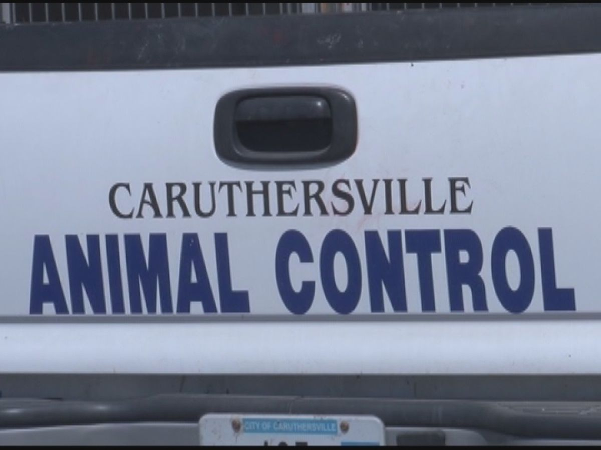 Caruthersville Humane Society and city shelter to merge