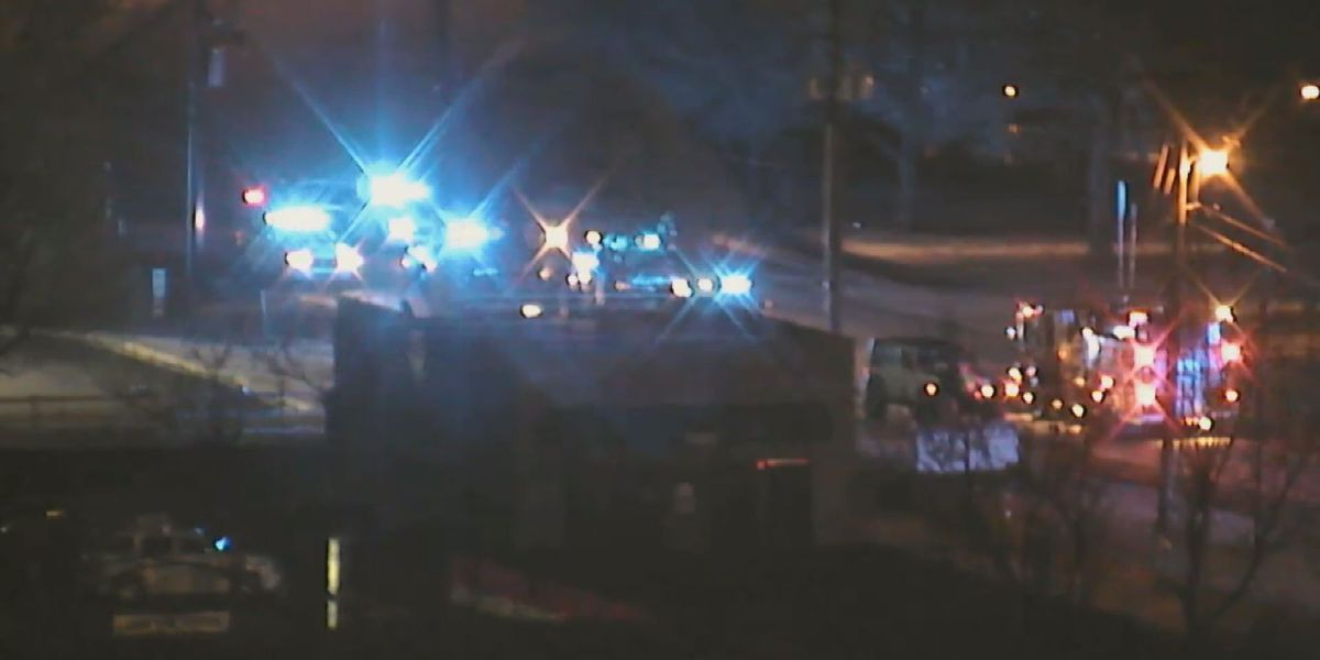 Pedestrian hit on Harrisburg Road identified