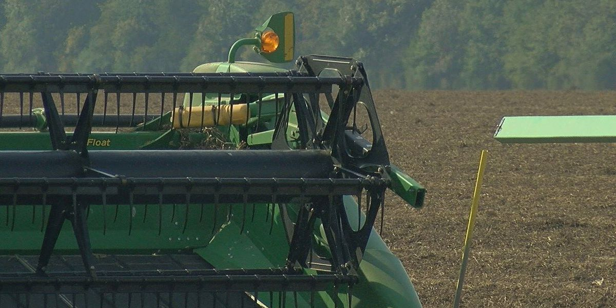 Plant board approves regulations on Dicamba