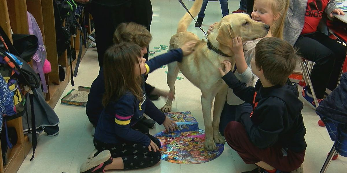 Students get K9 Ozzy at school