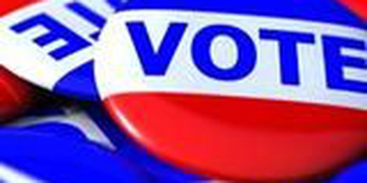 Arkansas court hears challenge over reworked voter ID law