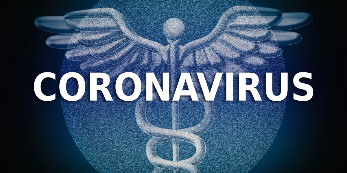 Local universities adjust study overseas programs in response to coronavirus