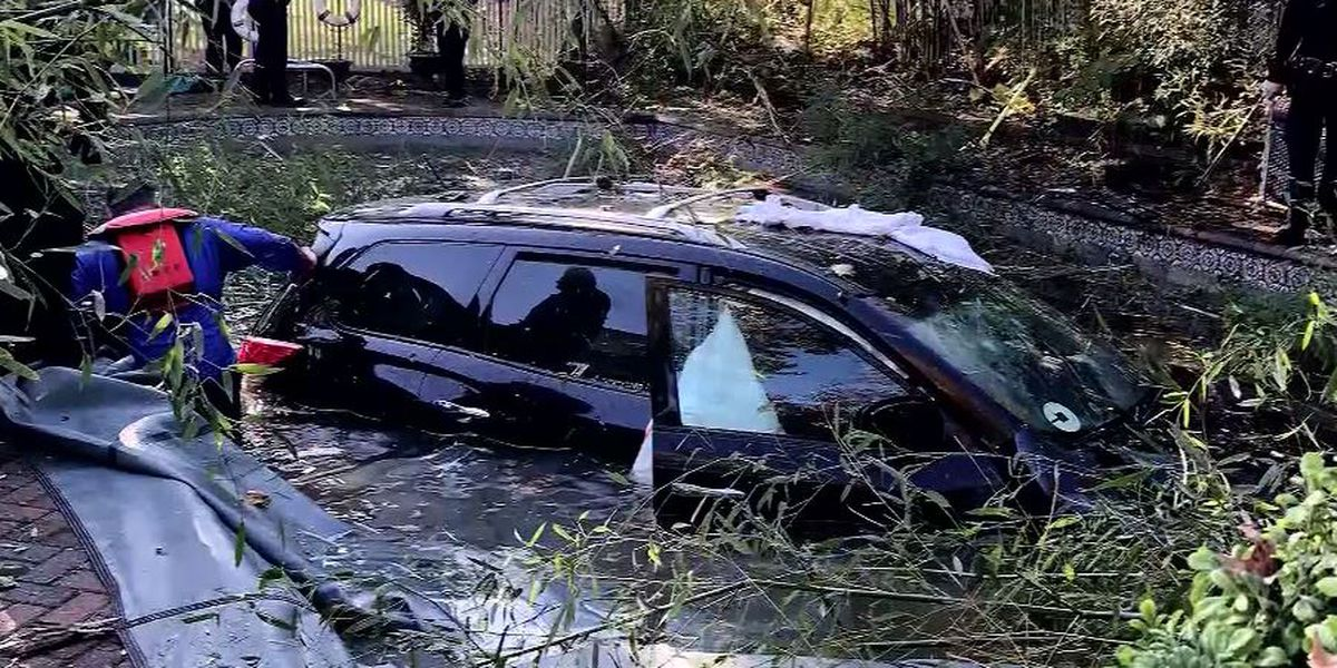 2 rescued after Uber driver veers into NY swimming pool