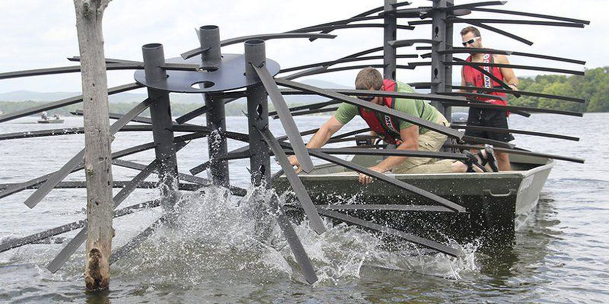 Biologists deploy Georgia cubes at DeGray Lake